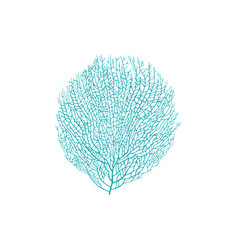 Gorgonian seaweed blue bushy soft coral isolated vector