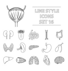human organs set icons in outline style big vector image