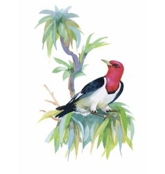 Watercolor colorful Bird on branch with green vector image