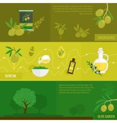 Olives banner set vector image vector image