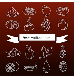 fruit outline icons vector image