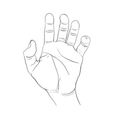 Hand action vector
