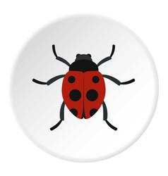 Ladybug icon circle vector