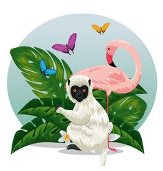 Lemur with flamish and butterflies animals with vector