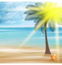 Untouched tropical beach vector