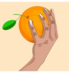 Woman hand with an orange vector