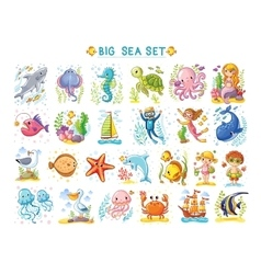Big Marine set of on the theme vector image
