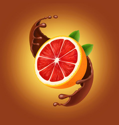 Chocolate splash with grapefruit vector