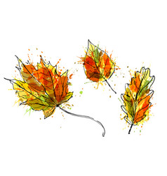 Colored hand sketch leaves vector