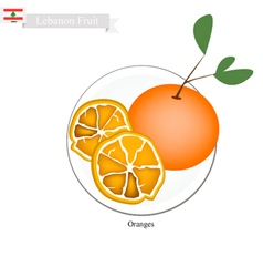 Fresh orange a famous fruit in lebanon vector