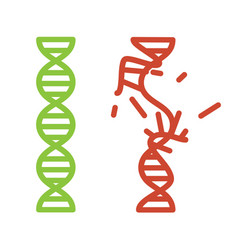 Intact and damaged dna strand vector