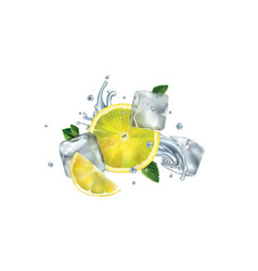 sliced lemon mint leaves and ice cubes with water vector image