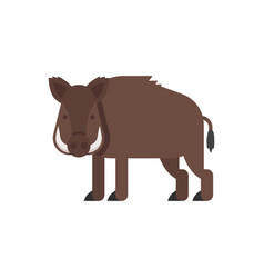 flat style of boar vector image vector image