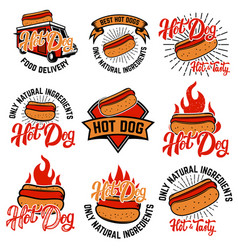 hot dog labels handwritten lettering logo label vector image vector image