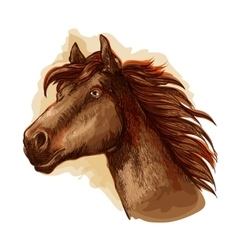 Brown racehorse for horse racing design vector image vector image