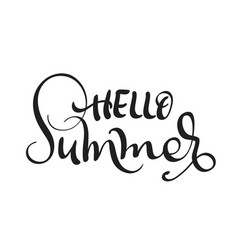 hello summer text isolated on white background vector image