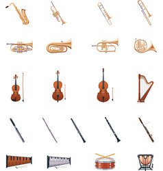 Instruments of the Orchestra vector image vector image