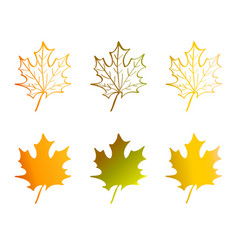 A maple leaf in red yellow orange and green vector