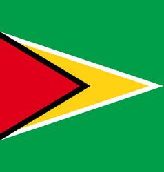 flag of guyana vector image vector image