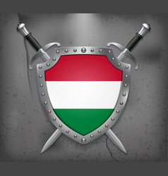 flag of hungary the shield with national flag vector image