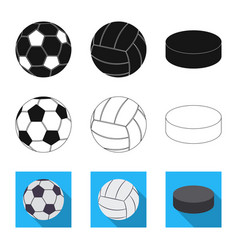 Isolated object of sport and ball icon collection vector