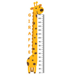 meter wall with giraffe vector image