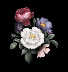 Roses in bloom vector