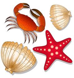 Set of marine inhabitants crab starfish and vector