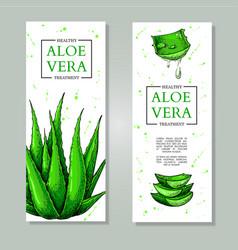 Aloe vera hand drawn banner natural vector