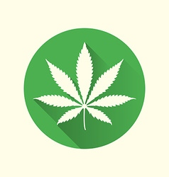Cannabis marijuana flat design icon vector