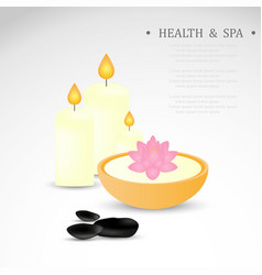 spa zone design vector image