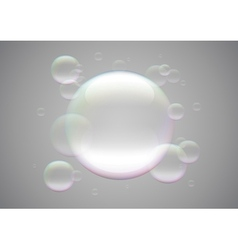 Transparent bubbles vector image