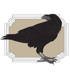 Black raveni nside a frame vector image vector image