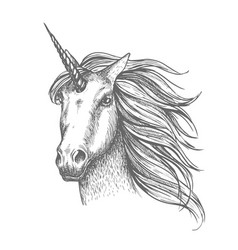 unicorn mythic horse sketch vector image vector image