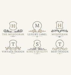 retro royal vintage shields logotype set vector image vector image