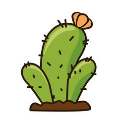 cactus desert isolated icon vector image