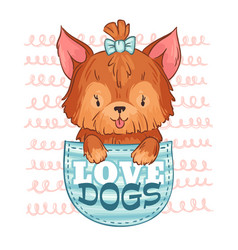 cute pocket dog love dogs little puppy and vector image