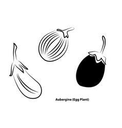 digital art abstract painting aubergine or egg vector image