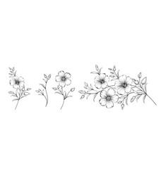 Set different flower linen on white background vector