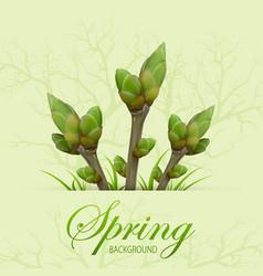three spring twigs vector image
