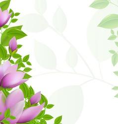 Magnolia Background vector image