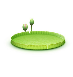 water lily pad vector image vector image