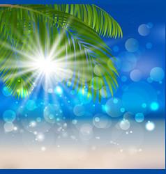sea sand palm vector image