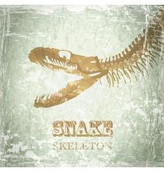 Snake Skeleton vector image vector image