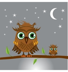 Brown owls sitting on a branch at night vector image