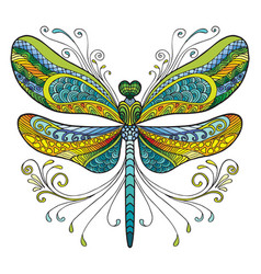 dragonfly colorful vector image