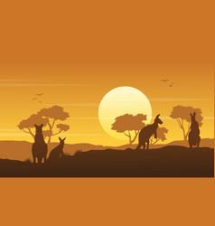 Kangaroo on hill scenery silhouettes vector