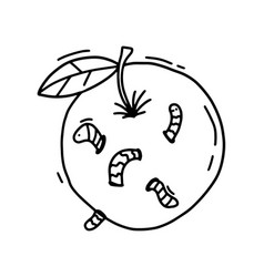 outline apple worm a hand drawn cartoon an vector image