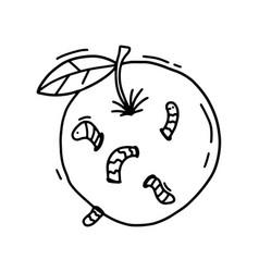Outline apple worm a hand drawn cartoon vector