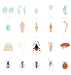 Set of parasites vector image